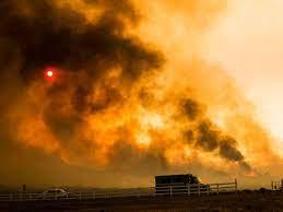 After Tamarack Fire, the U.S. Plans New ...