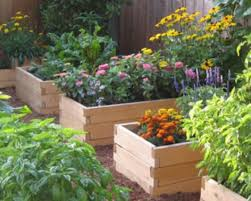 Small Picture Pictures Of Raised Flower Beds Raised Bed Garden Design Building
