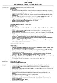 How To Build A Strong Resume Best How To Build A Strong Resume Peppapp Job Exce Sevte 11