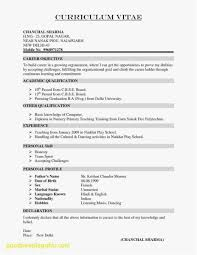 Psychologist Resume Free Templates Resume Designs Templates