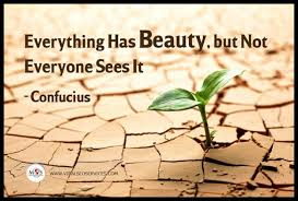 Everything Has Beauty Quotes Best Of ConfuciusQuotesEverythingHasBeauty24 Best Quotes 24