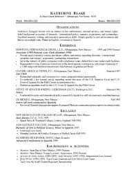 Good Summary Of Qualifications For Resume Resume Creator Simple Source Custom Good Resume Summary