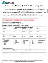 Fillable Online Behavioral Health Critical Incident Report Form