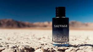 christian dior sauvage cologne