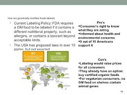 genetically modified food 15 16 how are genetically modified