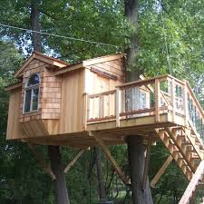 tree house designs. Tree House Designs