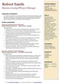 Business Analyst Project Manager Resume Samples QwikResume Magnificent Business Manager Resume