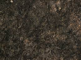 dark dirt texture seamless. Plain Texture Ground Texture With Dry Scorched Grass And Twigs On Dark Dirt Texture Seamless R
