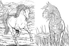 free horse coloring pages for s