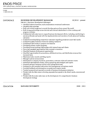 Business Development Manager Resume Business Development Manager Resume Sample Velvet Jobs 19