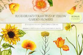 hand drawn garden flowers setbonus bonus example image 1