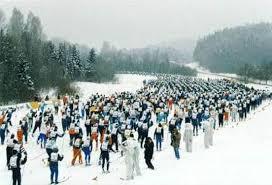 Реферат Лыжный спорт коньковый ход ru Лыжи имеют большое прикладное значение в быту и на различных работах в условиях длительной и снежной зимы в северных и восточных районах страны