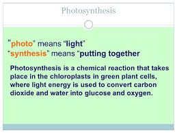 what is the overall chemical equation for photosynthesis in words