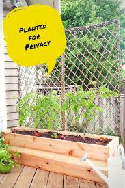 fullsize of stylish diy patio privacy screens backyard ideas trellis planter garden screen trellis trellis planter