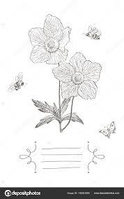 テキスト ヴィンテージ植物イラスト桜の花アネモネ蜂蝶ベクター
