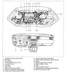 spark plug wire diagram Spark Plug Wiring Diagram 2003 kia sedona spark plug wire diagram wiring diagrams spark plug wiring diagrams automotive