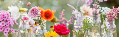 Image result for spring flowers