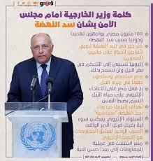 كلمة وزير الخارجية أمام مجلس الأمن بشأن سد النهضة| إنفو جراف