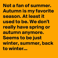 is my favorite season essay why summer is my favorite season essay example for