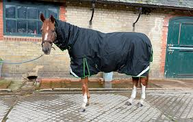 review of turn out rugs rug no7 limited edition premier equine cellular zone