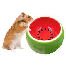 Legendog Hamster Bowl <b>Creative</b> Cute Fruit Pattern <b>Pet Bowl</b> Pet ...