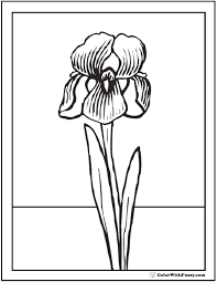 Color pictures of baby animals, spring flowers, umbrellas, kites and more! Spring Flowers Coloring Page 28 Spring Coloring Pages