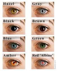 Iris Color Chart Eye Color Chart Interesting Facts About The Different