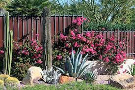 Small Picture Desert Landscape Designs