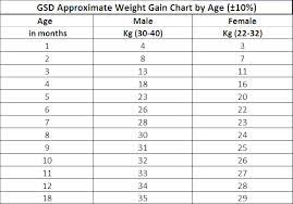 Puppy Weight Chart German Shepherd Size Of Gsd Pups Page 1