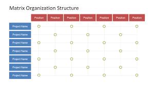 Ptv Org Chart Matrix Organization Structure