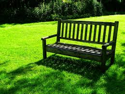 Wooden Park Bench In Nature A Good Place To Sit Stock Photo Sit Bench