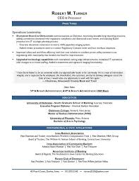 Ceo Resume Template Impressive AwardWinning CEO Sample Resume CEO Resume Writer Executive