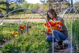 cut flower farmers creative geniuses
