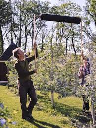 My Electric Fence Around My Peach And Pear Trees  YouTubeHow To Protect Your Fruit Trees From Squirrels