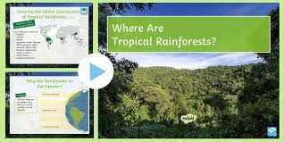 It is an area with many creatures and species and provides the earth with many benefits. Where Are Tropical Rainforests Powerpoint Teacher Made