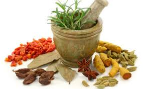 Naturopathy Diet Chart For Obesity Naturopathy Food And Diet Therapy Service Provider From Delhi