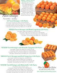 dooley groves inc florida navel oranges fresh florida citrus gift fruit from dooley groves country farm market in ruskin florida