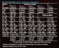Purina Puppy Feeding Chart Details About Purina Pro Plan Focus Puppy Lamb Rice Formula Dry Dog Food 1 18 Lb Bag