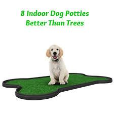 dogs bathroom grass. best 25+ indoor dog potty ideas on pinterest | potty, run side yard and k9 training dogs bathroom grass