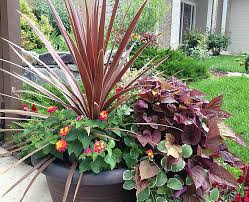 container garden design. Container Gardening Can Add That Special Personal Touch To Your Gardens And Patios! Garden Design