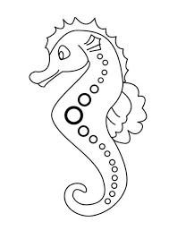 Hoe Maak Je Een Zeepaardje Van Schelpen Goedkoop Bloemschikken