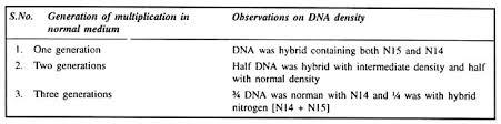 essay on dna replication genetics 2 cairns experiment 1963