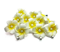 Small Picture DreamLily Womens Fashion 3 Pcs Hawaiian White Plumeria Flower