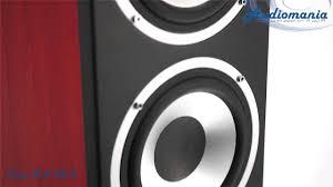 <b>Напольная акустика Elac FS</b> 58.2 - YouTube
