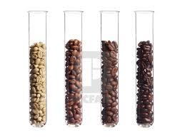 Light Medium Dark Roast Coffee Raw Light Medium And Dark Roast Coffee Beans In Test Tubes