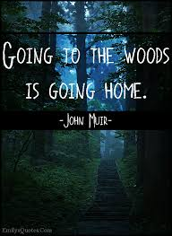 Going To The Woods Is Going Home Popular Inspirational Quotes At Amazing Woods Quotes