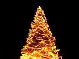 christmas tree lighting ideas. christmas tree lighting in holmes beach on dec 6th anna maria ideas