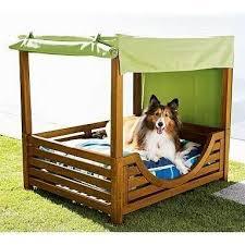 fun dog beds | Mia & Cosmo