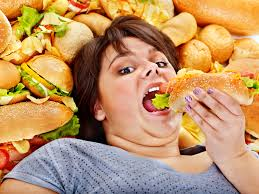 food and its harmful effects essay example a short essay on harmful effects of junk food essays