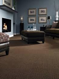 brown carpet living room